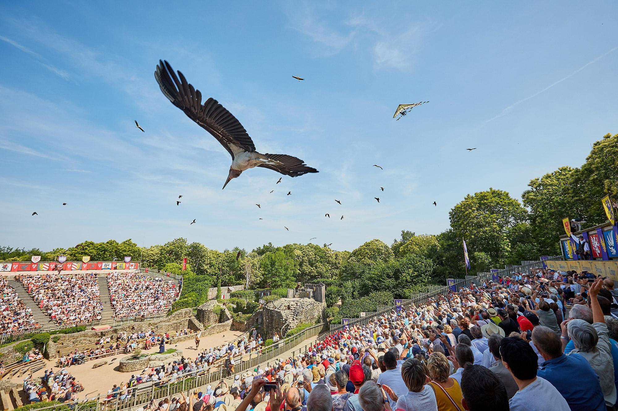 Le Bal des Oiseaux Fantômes | Spectacle Puy du Fou